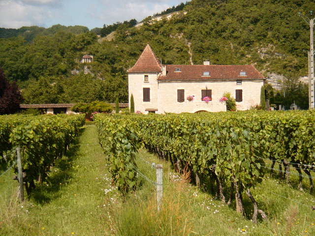 Cahors_Chateau-wijn